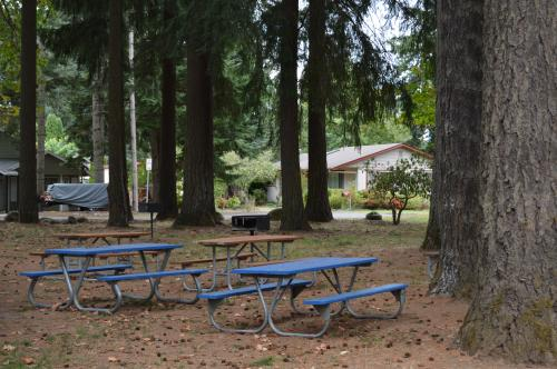 Picnic Tables at the Park