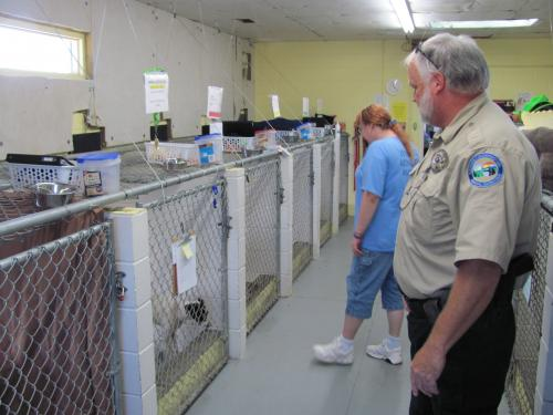 Animal Control Officer and woman looking at impounded dogs